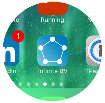 iOS Custom App